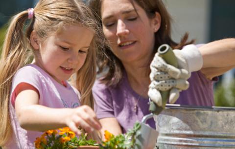 Wimbledon Nannies Nanny Agency For Reliable Childcare Recruitment Wimbledon Nannies